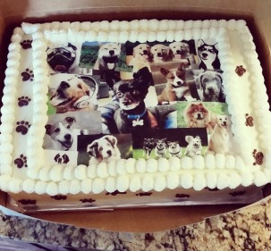 Friend cake picture